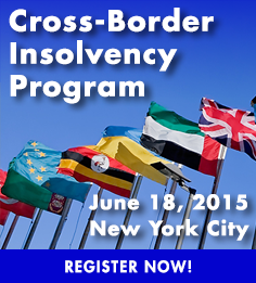 Cross-Border Insolvency Program